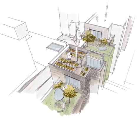 Roof Gardening 2