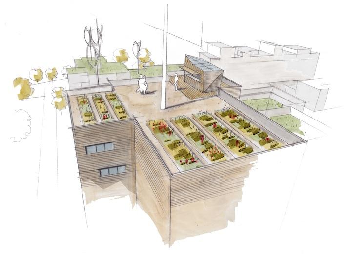 08 Skizze Roof Gardening